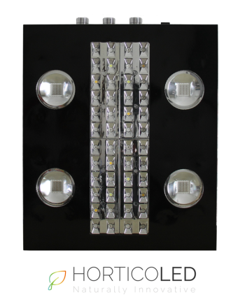 X-Max4 V2 Horticoled kweeklamp