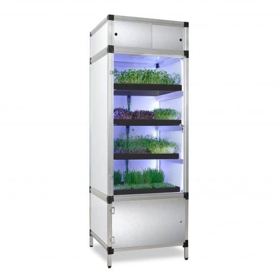 Sprouter kweekkast voor kiemgroenten en microgreens
