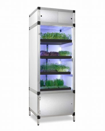 growbox for sprouts and microgreens
