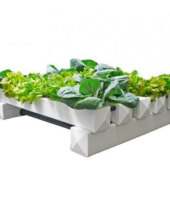 hydroponic-kweeksysteem
