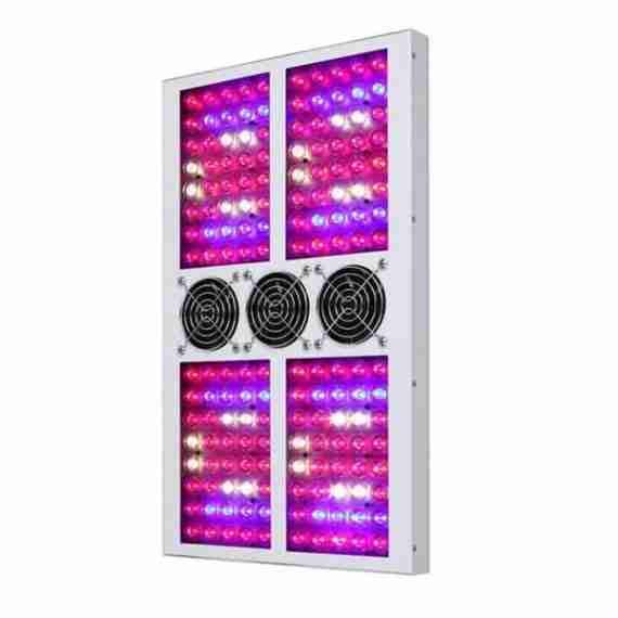 G-LEDS 560 (2)