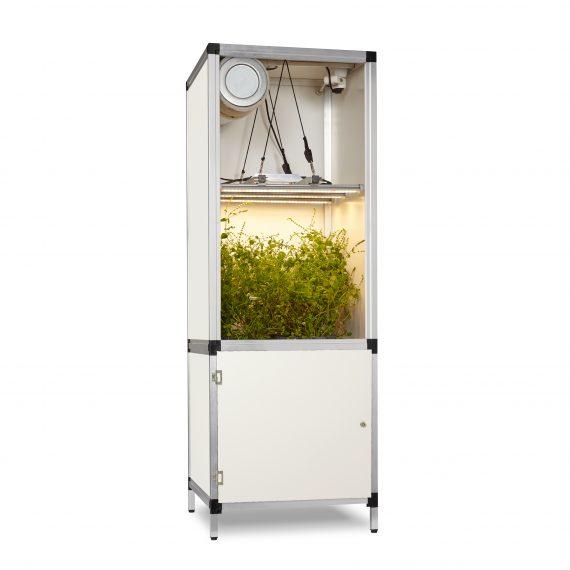 Growbox mit LED Lampe