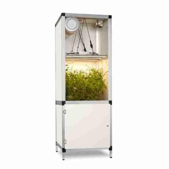 growbox met led kweeklamp