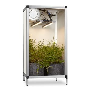 Growbox, modèle bas à LED