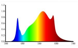 FSM-spectrum-g-bars-300x183.jpg