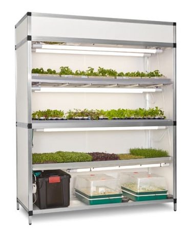 grow cabinet for vegetables herbs and mircogreens