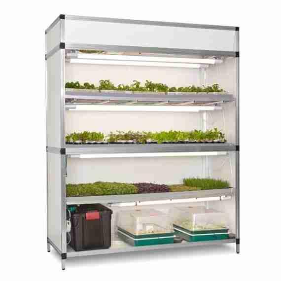 kweekkast voor groenten kruiden en microgreens